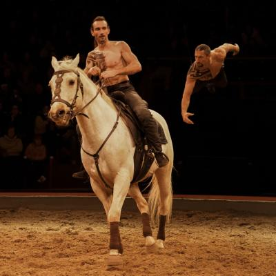 Alchimie Equestre